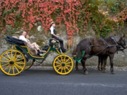 Horse-Drawn Carriage Rides