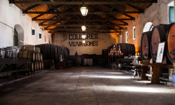Viúva Gomes Wine Cellars